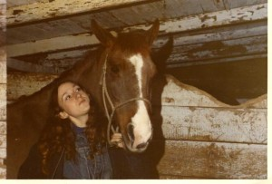 Horses004