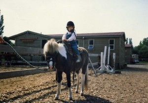 Horses021