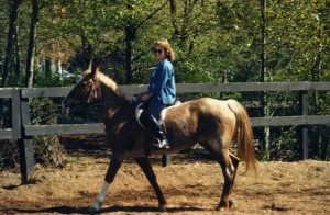 Horses023