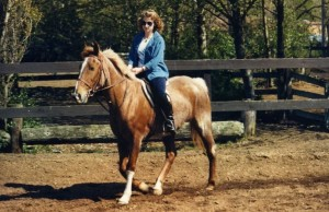 Horses024
